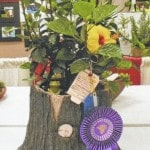 Best of show for potted container