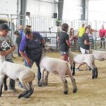 Fair ends on high note, better weather