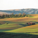 Farm income expected to rise