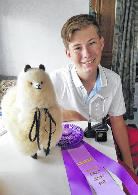 Cade Smith, finalist for the Best Showman award, with his ribbon and stuffed alpaca made from genuine alpaca fur.